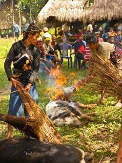 Elaborate funeral rites of Sumba