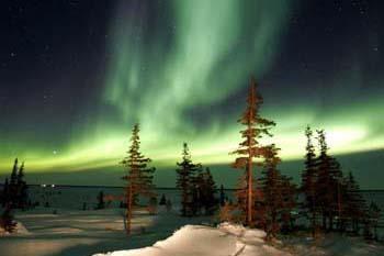 Churchill, Manitoba, Canada: More Than Just a Pretty Polar Bear Spot