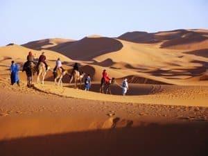 Riding camels through the Sahara Desert. Photo by Delora Ward.
