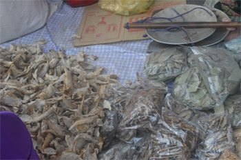 Drying mushrooms.