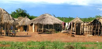 Typical homestead cluster, the thatched-roof structures are called bandas.