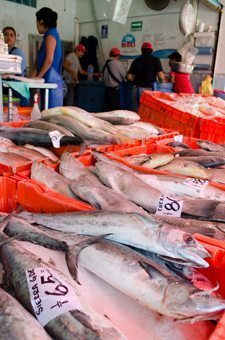Veracruz fish market stall in the afternoon