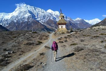 En route to Julu on the new Annapurna trekking trails in Nepal. photo by Heather Knight.