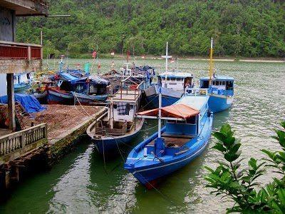 Boats in the Marina.