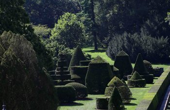Wide-angle view of the Topiary Garden.