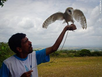Percillio with one of his raptors.