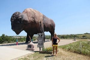 Tje World's largest buffalo statue in Bismarck. photo:therightfit.com
