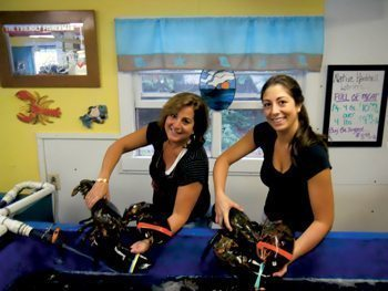 Janet and Alana Demetri wrestle a few eight pound bugs at the Friendly Fisherman, a lobster shack in North Eastham, Cape Cod, Massachusetts.