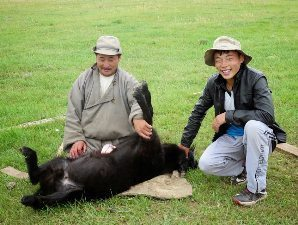 Father and son do a merciful killing of goat with the heart on top of the animal.