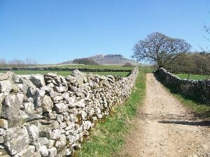 Pen-y-Ghent from Bracken Bottom.