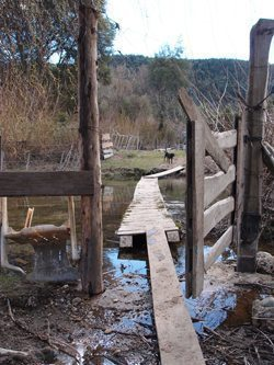 A river crossing at the farm in Argentina.