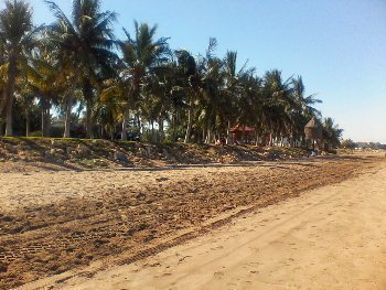 City centre beach sand.