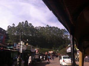 Indian countryside view via autorickshaw.