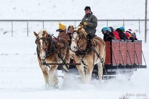 Sleigh ride in the Tetons.