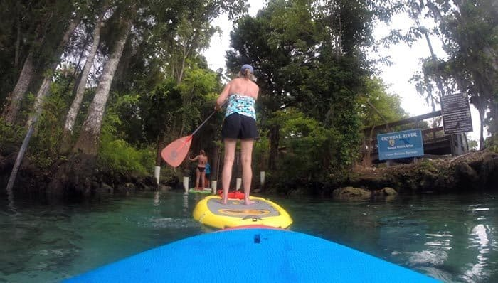 Paddleboarding through the entrance to Three Sisters Springs.