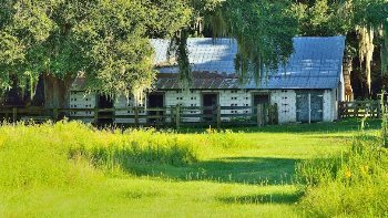 Florida Cracker stable at La Chua Trail. The Crackers were the first Western settlers and cowboys in Florida.