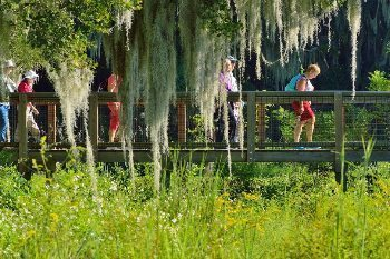 Many cyclists, birdwatchers and outdoor enthusiasts of every sort come to Paynes Prairie daily.
