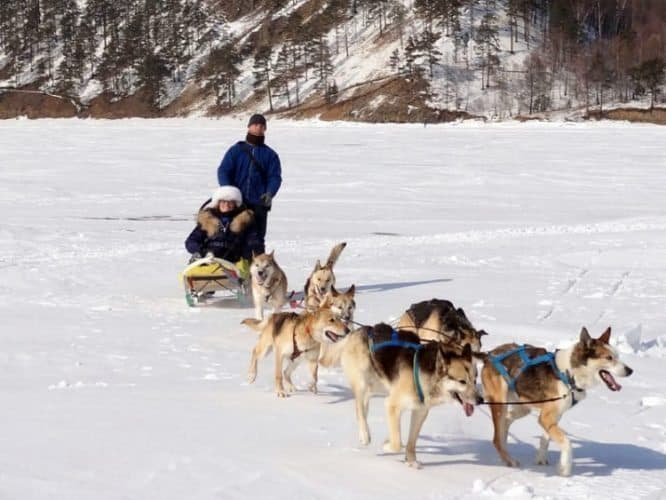 Dogsled Across Lake Baikal on the Siberian Winter Escapade