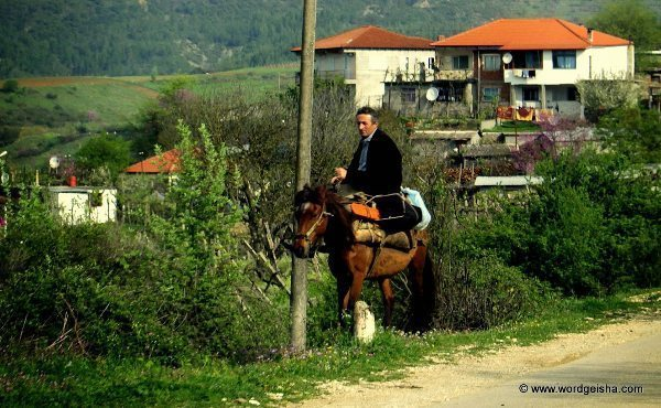 Horseback by the road,