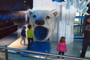 The kids polar bear play area at the Assiniboine Park Zoo.
