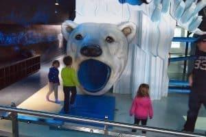 The kids polar bear play area at the Assiniboine Park Zoo.