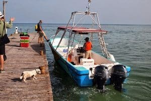 "Our small boat, the Gaviota, with captain Pablo Avila Arguelles, aka, ""Mushu."""