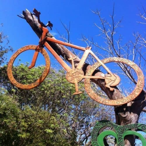 Bicycle in a tree on Rapa Nui.