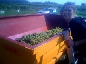 Joanna with the truck of grapes at Chateau Taillan in Medoc, France.