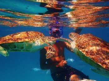 Lars with the Green Turtle. Cliffsharker trips Barbados