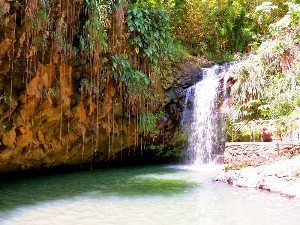 Annandale Falls, a beautiful spot in Grenada. Jean M. Spoljaric photos.