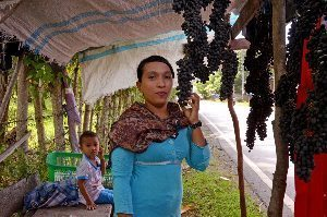 Aceh grapes.
