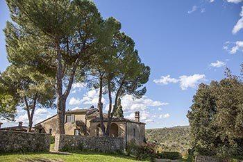 Italy: A Week on a Tuscan Farm
