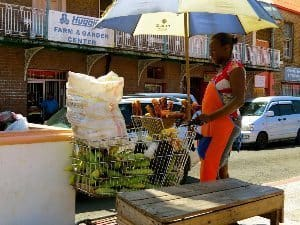 A woman cooks sweet corn in a street stand made of a shopping cart in Saint Georges.