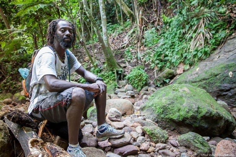 Reggie in the jungle