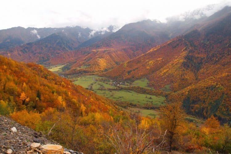 Striking beautiful foliage in rural Svaneti, in the north.