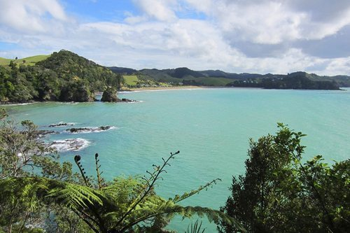 Whale Bay, New Zealand.