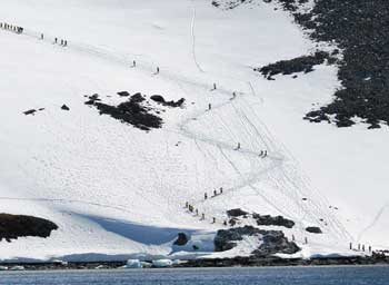 Passengers trekking up Danco Island. Zaid Mohamedy photo.