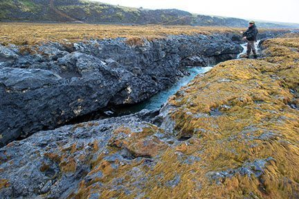Trout fishing is superb in Iceland!. Frontiers photos.