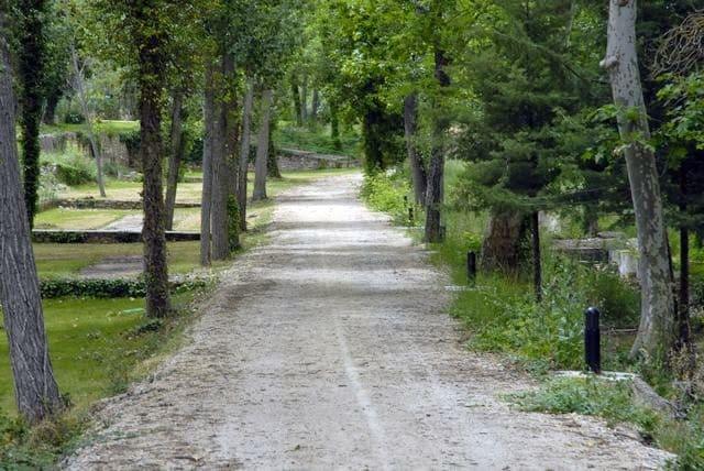 Long driveway to hotel Balneario Carlos III in Trillo.
