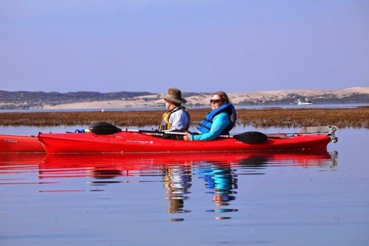 Kayaking with John Flaherty in the bay along with the sea otters, seals and seabirds.