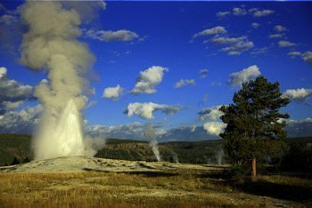 Old Faithful, Yellowstone National Park. Janis Turk photos.
