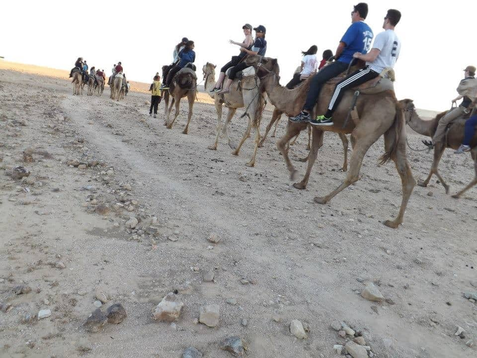 Camel Riding in the desert in Israel. Danielle Aihini photos.