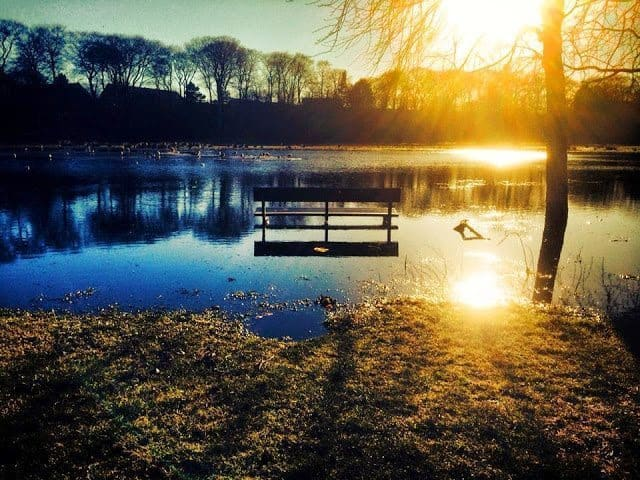 Seaton Park in winter
