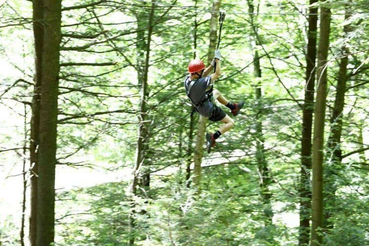 Zipping above the trees in the Berkshires of Massachusetts.