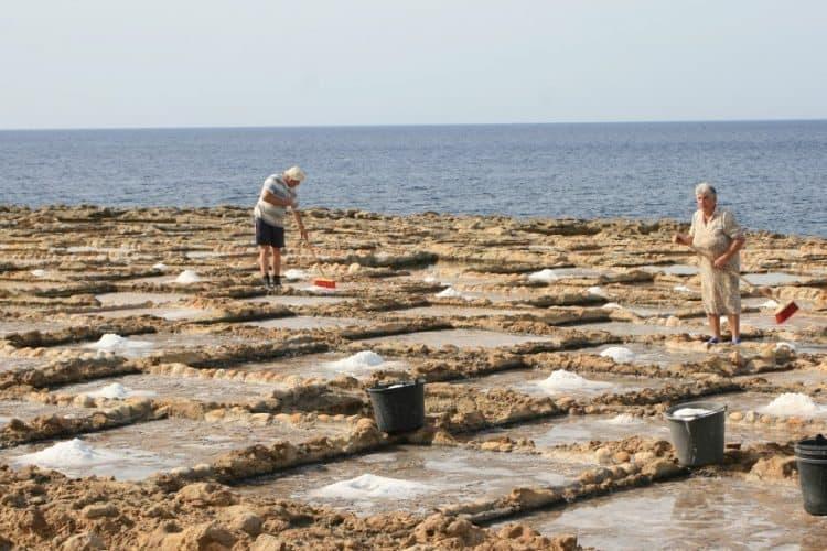 Harvesting sea salt in Gozo.