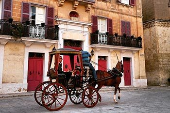 A horse and carriage in Valletta, Malta.