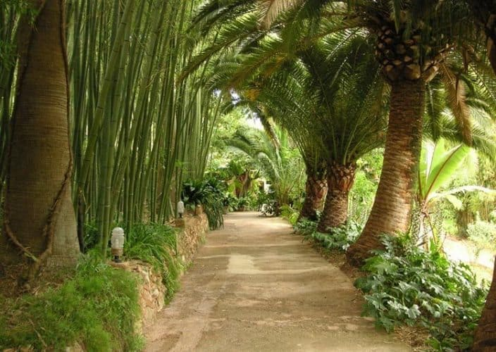 Tropical park in Miami, Florida.
