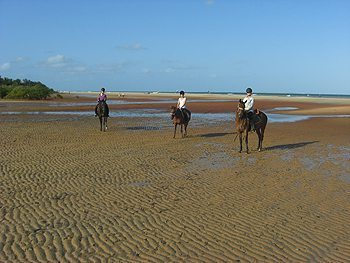About to canter on the beach in Mozambique. Read about volunteering and riding in this African country!