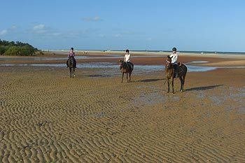 Mozambique: Volunteering on Horseback