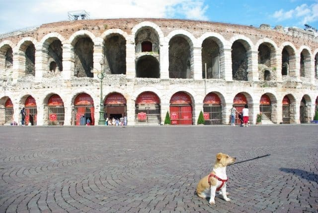 Falco standing in front of Italy's largest ampitheatre.